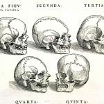 1543--Vesalio-01