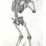1560-VALVERDE-04
