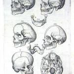 1560-VALVERDE-05