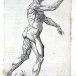 1560-VALVERDE-10