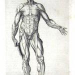 1560-VALVERDE-11
