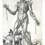 1560-VALVERDE-13