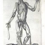 1560-VALVERDE-14