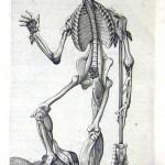 1560-VALVERDE-16
