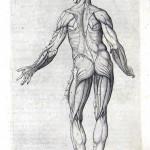 1560-VALVERDE-17