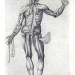 1560-VALVERDE-18