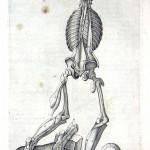 1560-VALVERDE-22