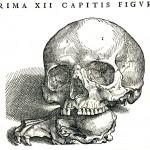 1543--Vesalio-11