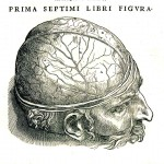 1543--Vesalio-15