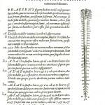 1543--Vesalio-52