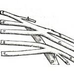 1543--Vesalio-55