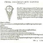 1543--Vesalio-60