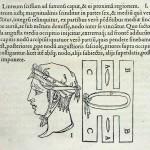 1544-VIDIUS-015