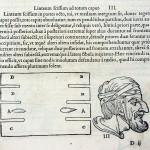 1544-VIDIUS-017