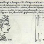1544-VIDIUS-018