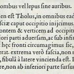 1544-VIDIUS-023