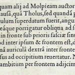 1544-VIDIUS-027