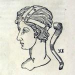 1544-VIDIUS-031