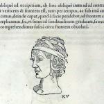 1544-VIDIUS-037