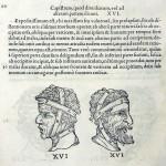1544-VIDIUS-038