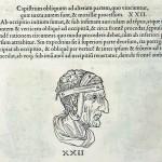 1544-VIDIUS-048