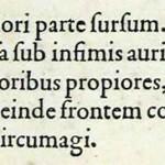 1544-VIDIUS-053