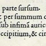 1544-VIDIUS-069