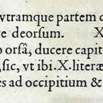 1544-VIDIUS-072