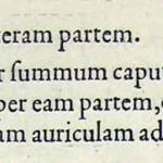 1544-VIDIUS-076