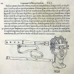 1544-VIDIUS-081