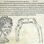1544-VIDIUS-082