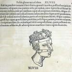 1544-VIDIUS-087