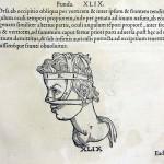 1544-VIDIUS-088