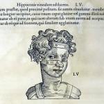 1544-VIDIUS-101