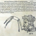 1544-VIDIUS-104