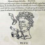 1544-VIDIUS-105