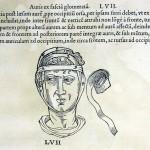 1544-VIDIUS-106