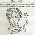 1544-VIDIUS-107