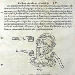 1544-VIDIUS-110