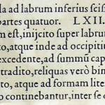 1544-VIDIUS-112