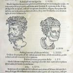 1544-VIDIUS-113