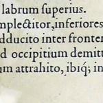 1544-VIDIUS-115