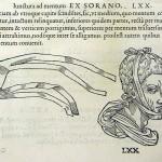 1544-VIDIUS-122