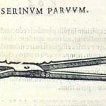 1573-CROCE-LAT-38.6