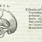 1583-CROCE-ITA-22
