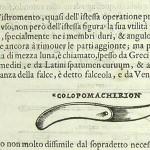 1583-CROCE-ITA-45