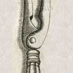 1665-Scultetus-06-copia-2