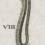 1665-Scultetus-09-copia-3
