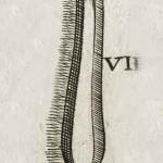 1665-Scultetus-09-copia-4