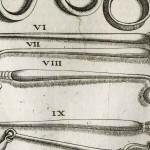 1665-Scultetus-10-copia-3